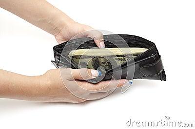 Dollars in open purse