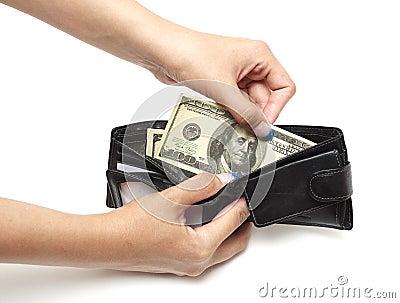 Dollars in purse