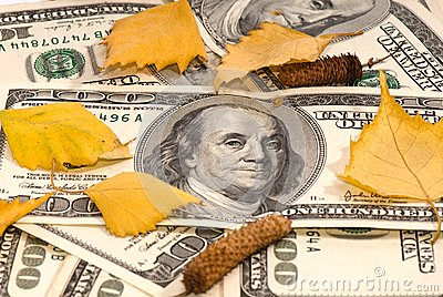 Dollars of the USA and birch leaves