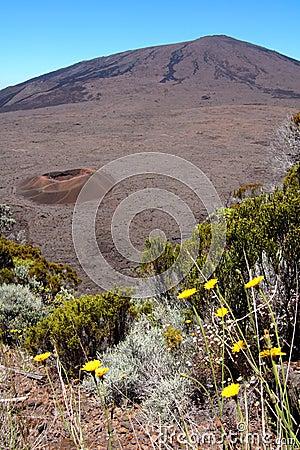 Dolomieu crater, Reunion island