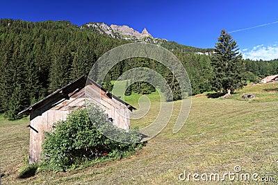 Dolomiti - view in Val di Fassa