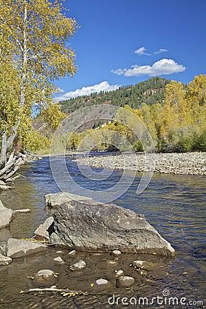 Dolores River in Autumn