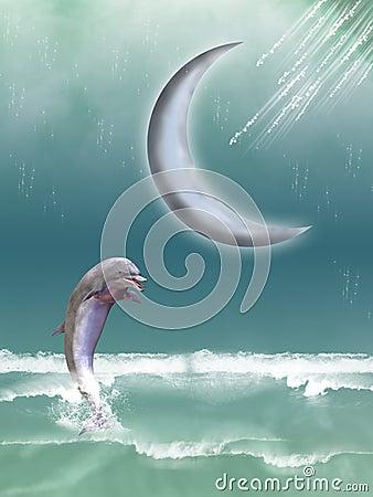 Free Dolphin Royalty Free Stock Photo - 5542565