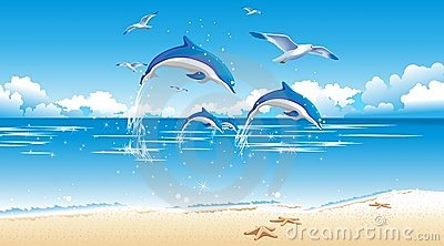 Dolphin and beach