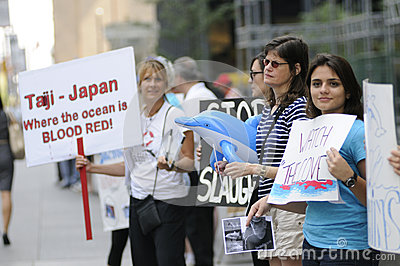 Dolphin hunting protest. Editorial Photo