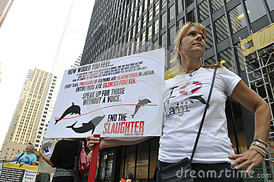 Dolphin hunting protest. Editorial Stock Image