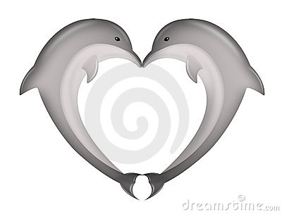 The dolphin kiss
