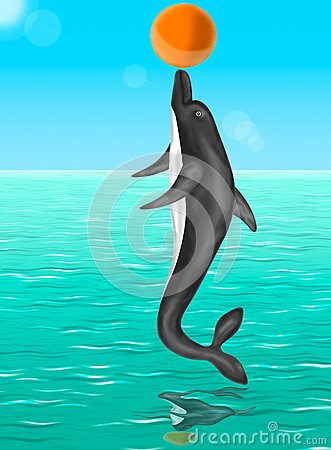 Dolphin plaing with a ball
