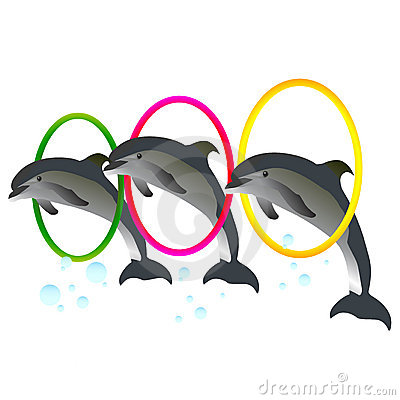 Dolphin Show with rings