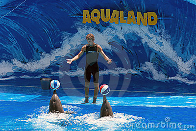 Dolphin show with trainer - Aqualand Tenerife Editorial Photo