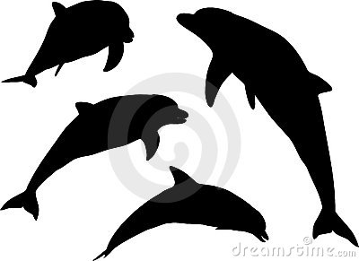 Dolphin silhouettes
