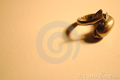 Dolphin silver ring