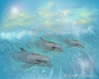 Dolphins art illustration