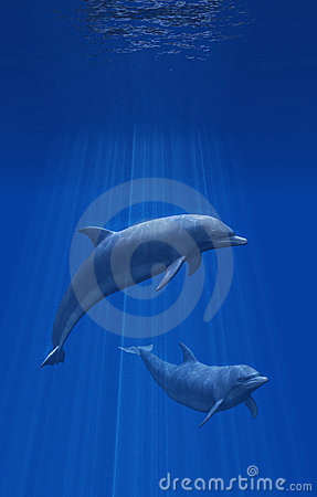Free Dolphins Undersea Stock Image - 5485231