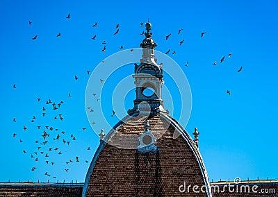 Dome in Brasov