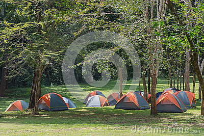 Dome tent camping