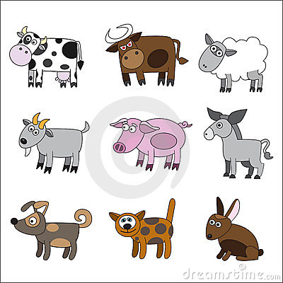Domestic animal set