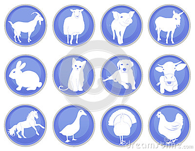 Domestic animals icon set 1