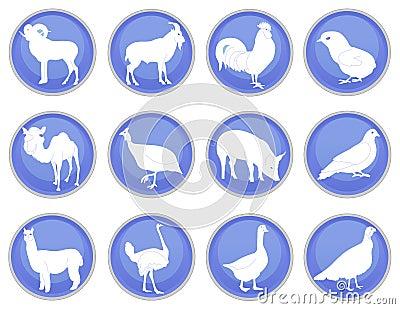 Domestic animals icon set 2