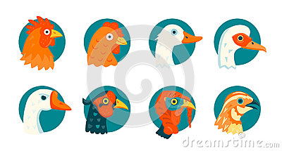 Domestic birds vector icons set Vector Illustration