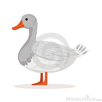 Free Domestic Goose, Poultry Breeding Vector Illustration Royalty Free Stock Photos - 94674788