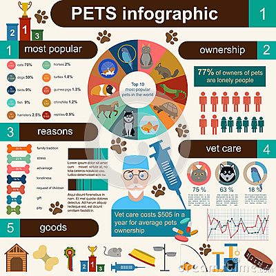 Free Domestic Pets Infographic Elements, Helthcare, Vet Stock Photography - 46004182