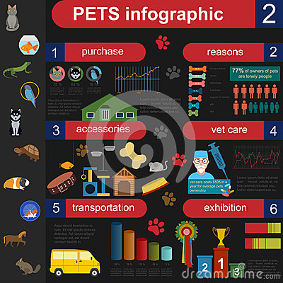 Free Domestic Pets Infographic Elements, Helthcare, Vet Stock Images - 46009664