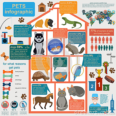 Free Domestic Pets Infographic Elements, Helthcare, Vet Royalty Free Stock Image - 46009756