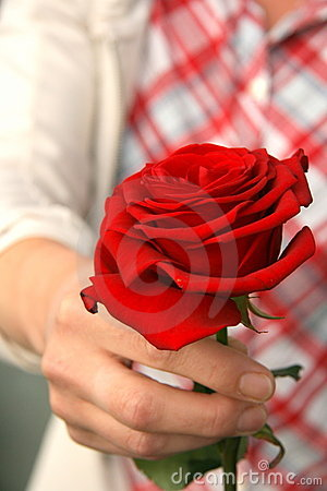 Donating a rose