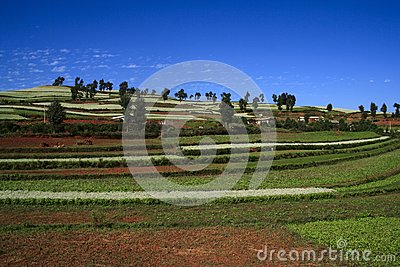 Dongchuan κόκκινο χώμα