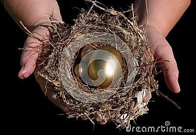 Dłonie złoty gniazdo jajko