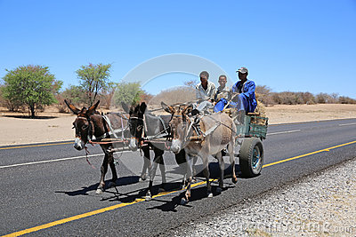 Donkey Cart Editorial Stock Image