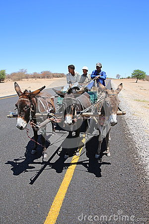 Donkey Cart Editorial Image