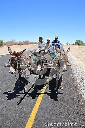 Donkey Cart Editorial Image