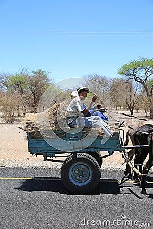Donkey Cart Editorial Stock Image
