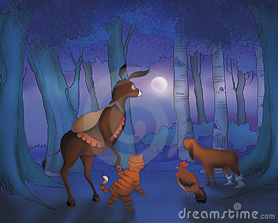 Donkey cat rooster and dog by night