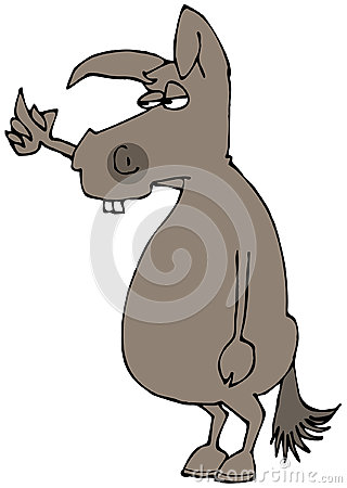 Donkey flipping the bird