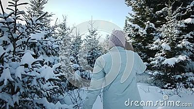 Donna che cammina in Forest Alone nel lotto di neve stock footage