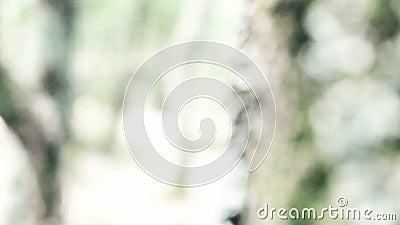 Donna dello zombie con sorridere del cappuccio archivi video