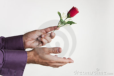 Donner l amour