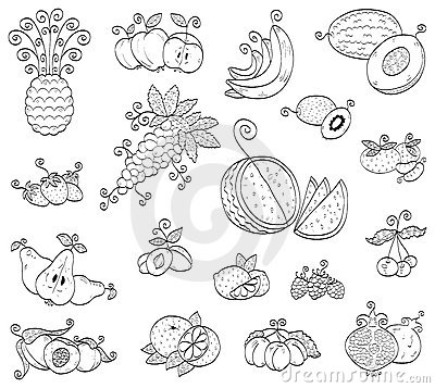Doodle fruits, berries