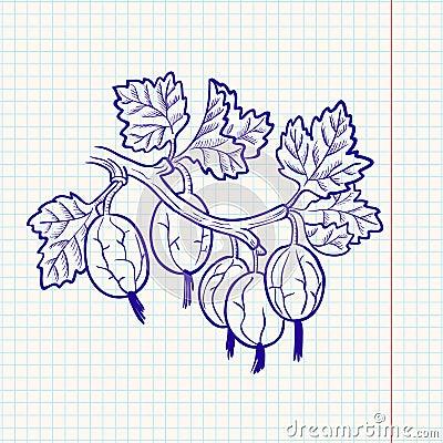 Doodle gooseberry