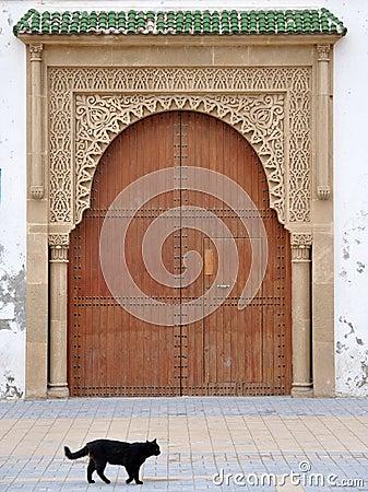 Door and Cat, Essaouria Morocco