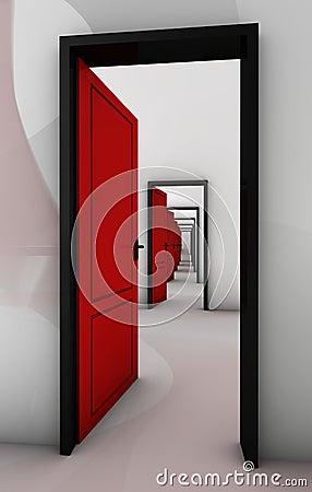 Door in door