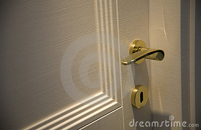 Door handle gold chrome door knob