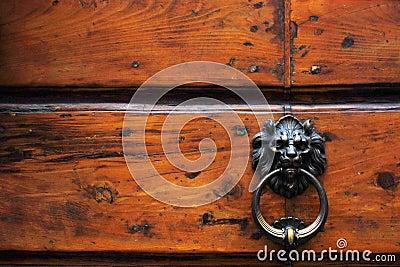 Door italian metal lion knocker
