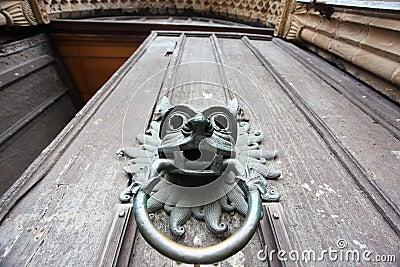 Door knocker with lion head