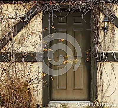 Door with overgrowth
