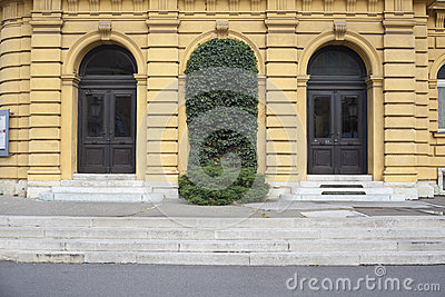 Doors covered with ivy