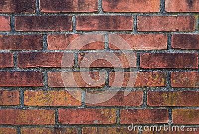 Doorstane bakstenen muur